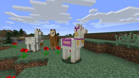 minecraft-111-llamas